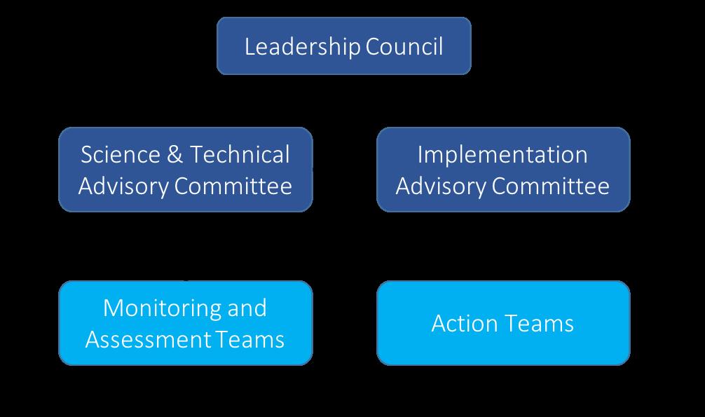 apnep organizational chart