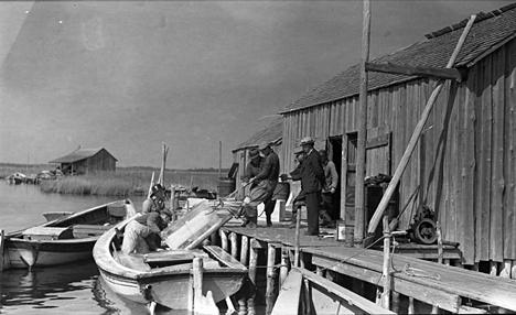 shad fishermen