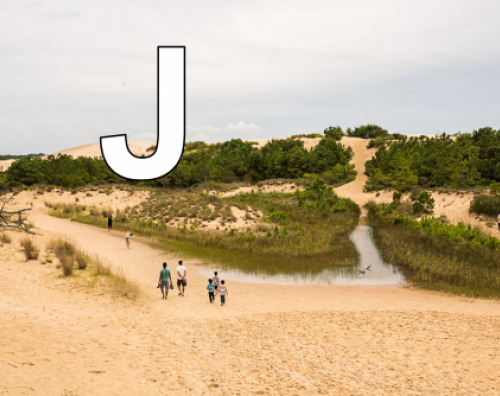 J is for Jockey's Ridge
