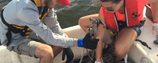 field work on boat