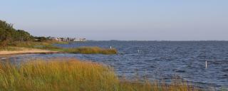 marsh and beach