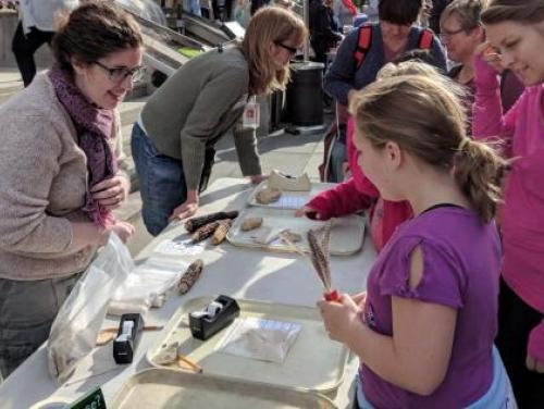 archaeologist show artifacts to kids