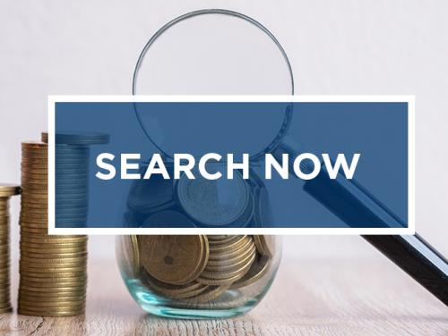 "Magnifying glass with stacks of coins with ""Search Now"" over top"