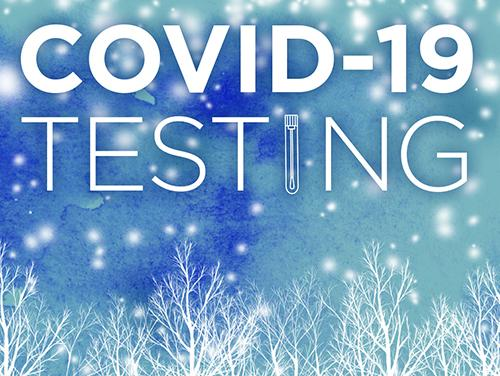 COVID-19 Snow image