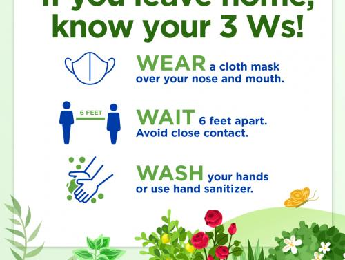 Know Your 3 Ws Spring background