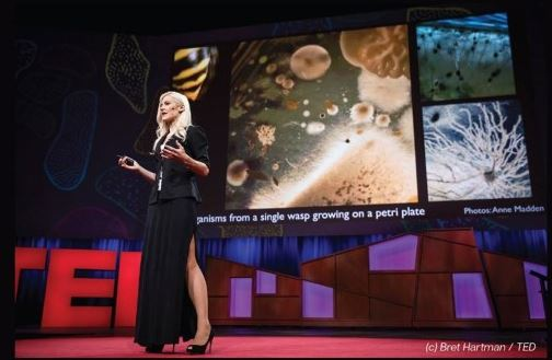 photo of Anne Madden on the Ted talk stage