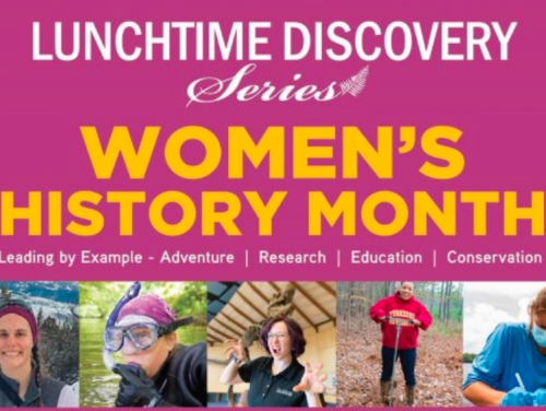 Lunchtime discovery series women's history month