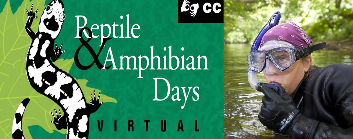 photo of Lori Williams snorkeling in a stream and reptile and amphibian day logo