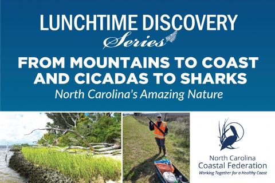 graphic advertising NC Coastal Federation Talk on May 26