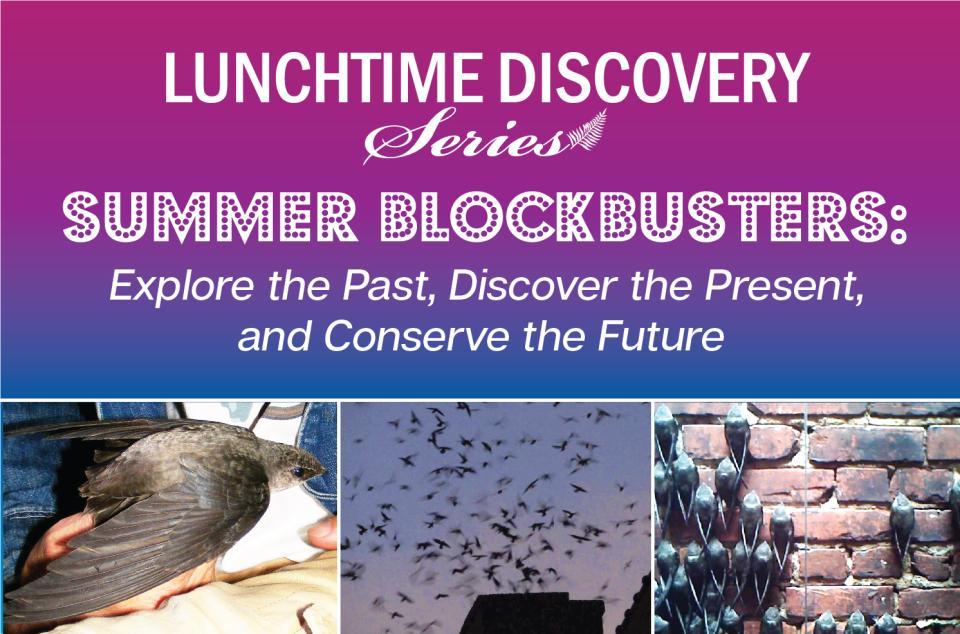 graphic advertising chimney swift talk on July 21