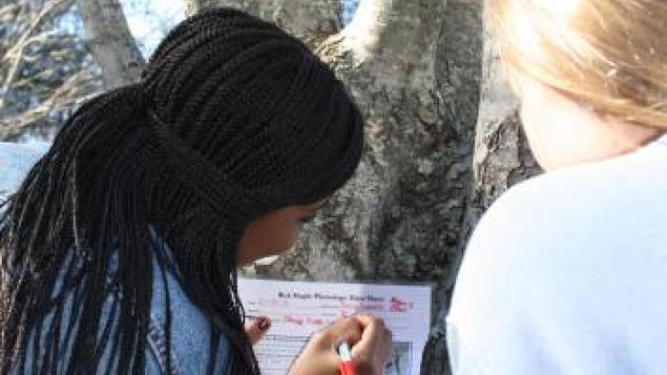 educators filling out a tree data sheet in front of a tree