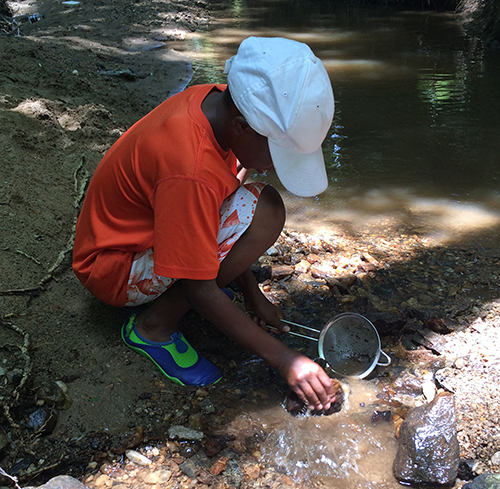 young boy samples sediment from a stream