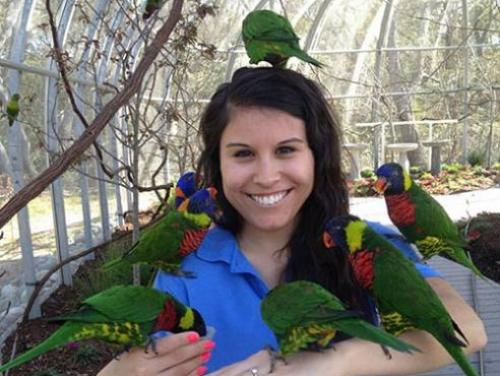 Marissa Blackburn, educator at the NC Aquarium, with colorful lorikeet birds sitting on her arms and head