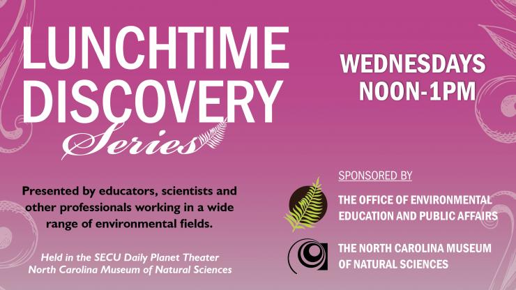 Lunchtime Discovery wednesdays noon to 1 pm