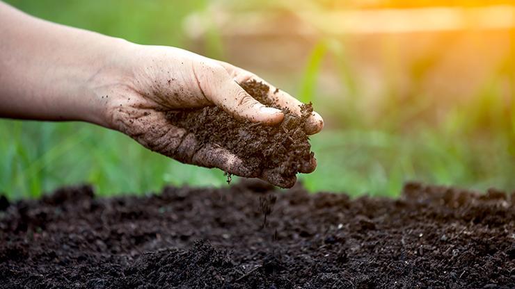 hand holding rich, fertile soil