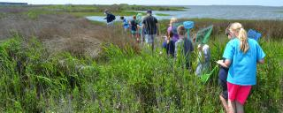Educator leads a group of children through coastal wetlands