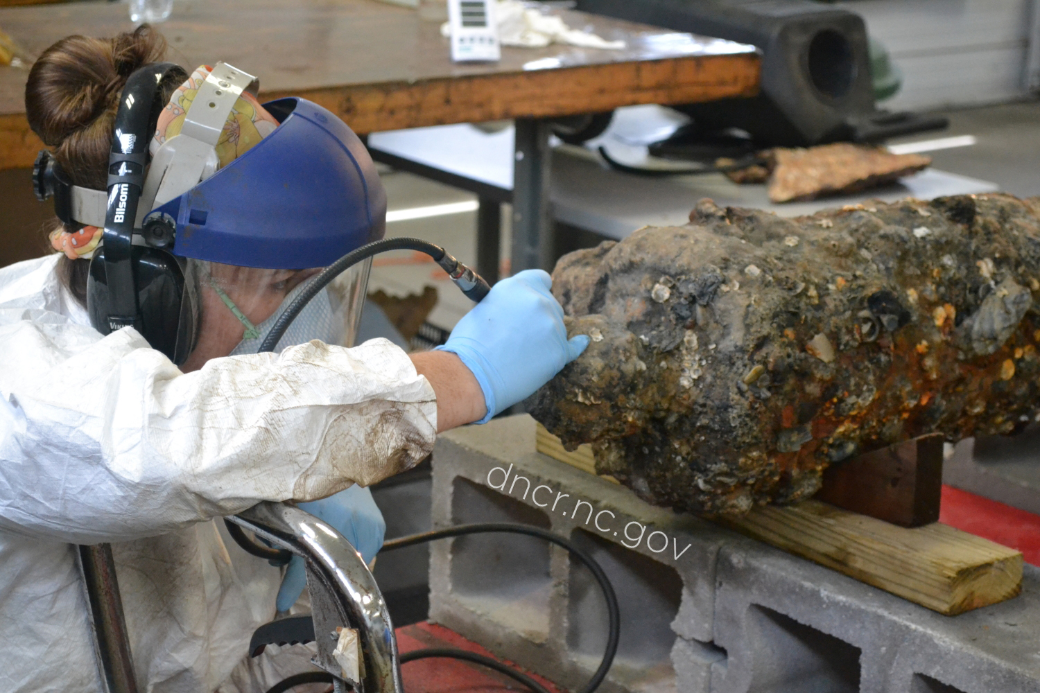 Conserving a cannon from the QAR shipwreck.