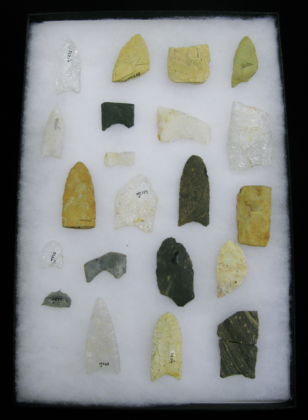 Projectile points donated to the OSA by collectors who meticulously recorded their findings.