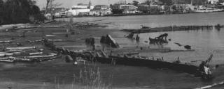 Cape Fear shipwreck