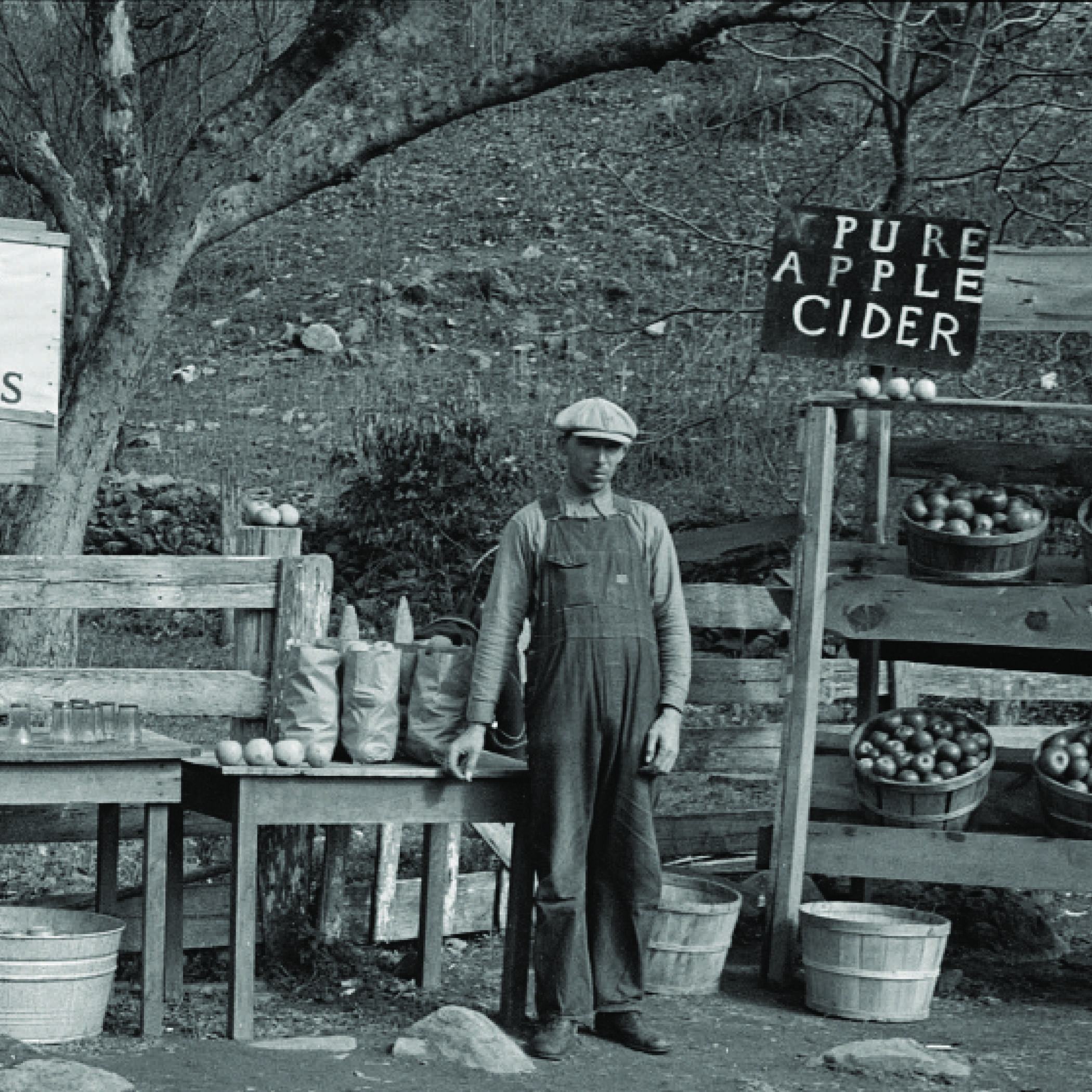 vintage photograph of a man in overalls standing in front of a fruit stand selling apples