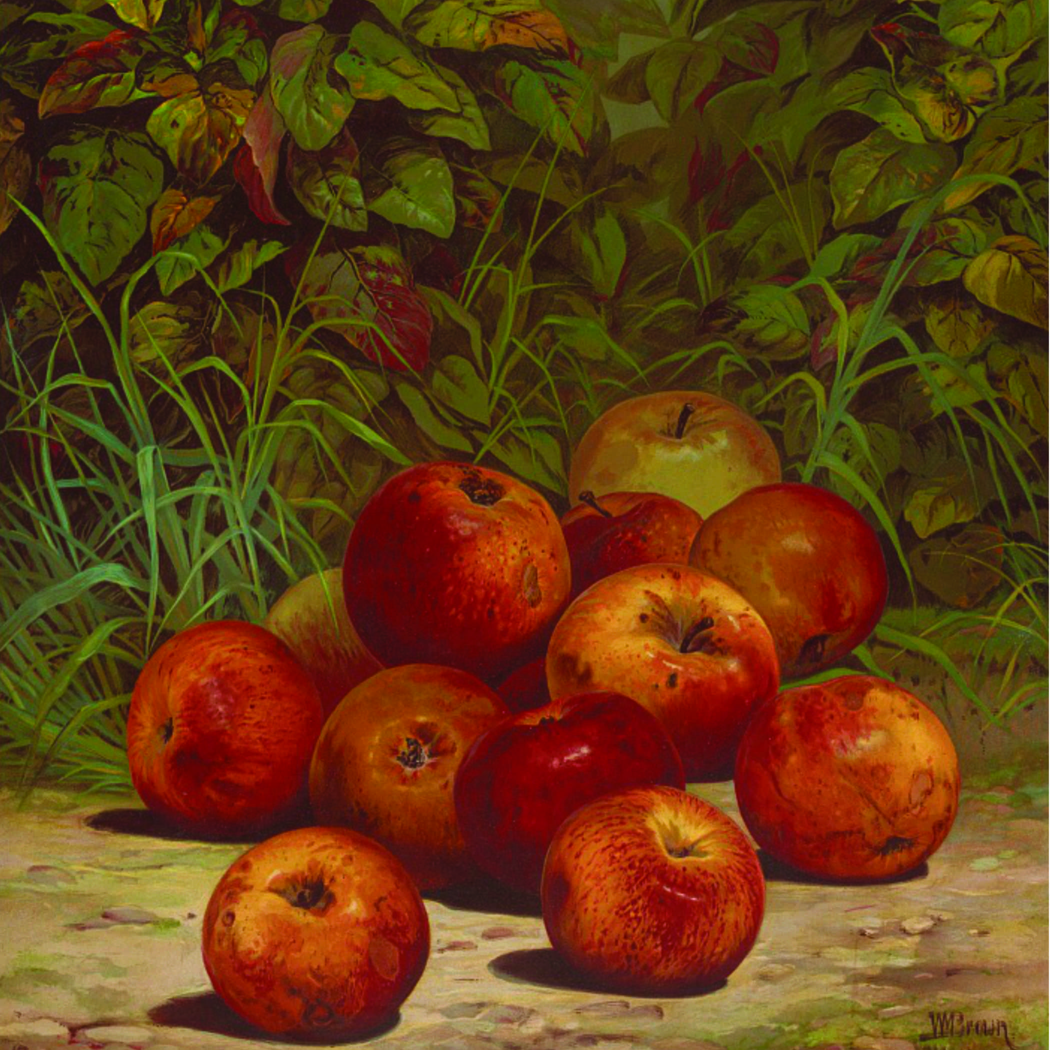 painting of a pile of red and yellow striped apples on the ground with greenery behind them