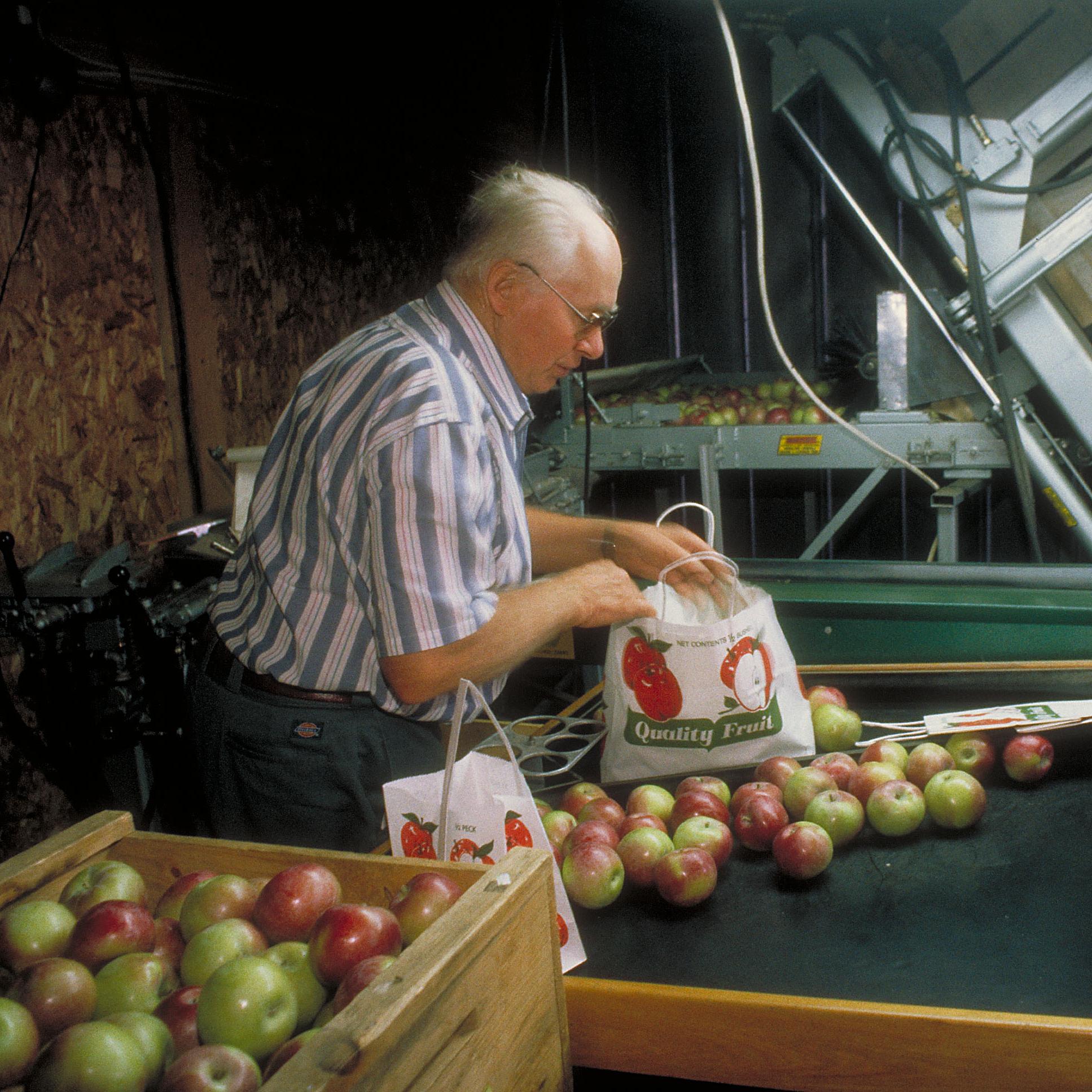 a man placing apples into a paper bag