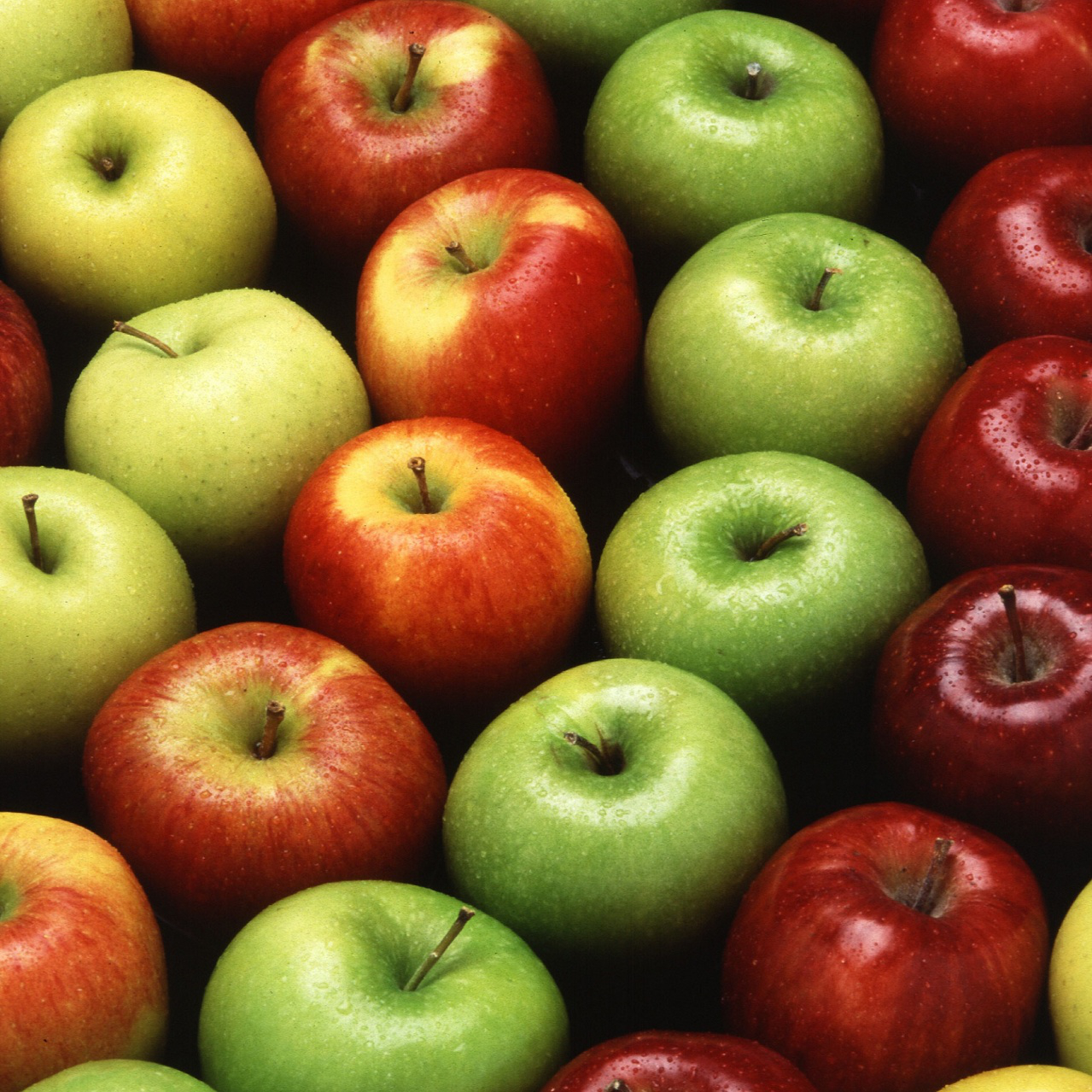 rows of multicolored apples