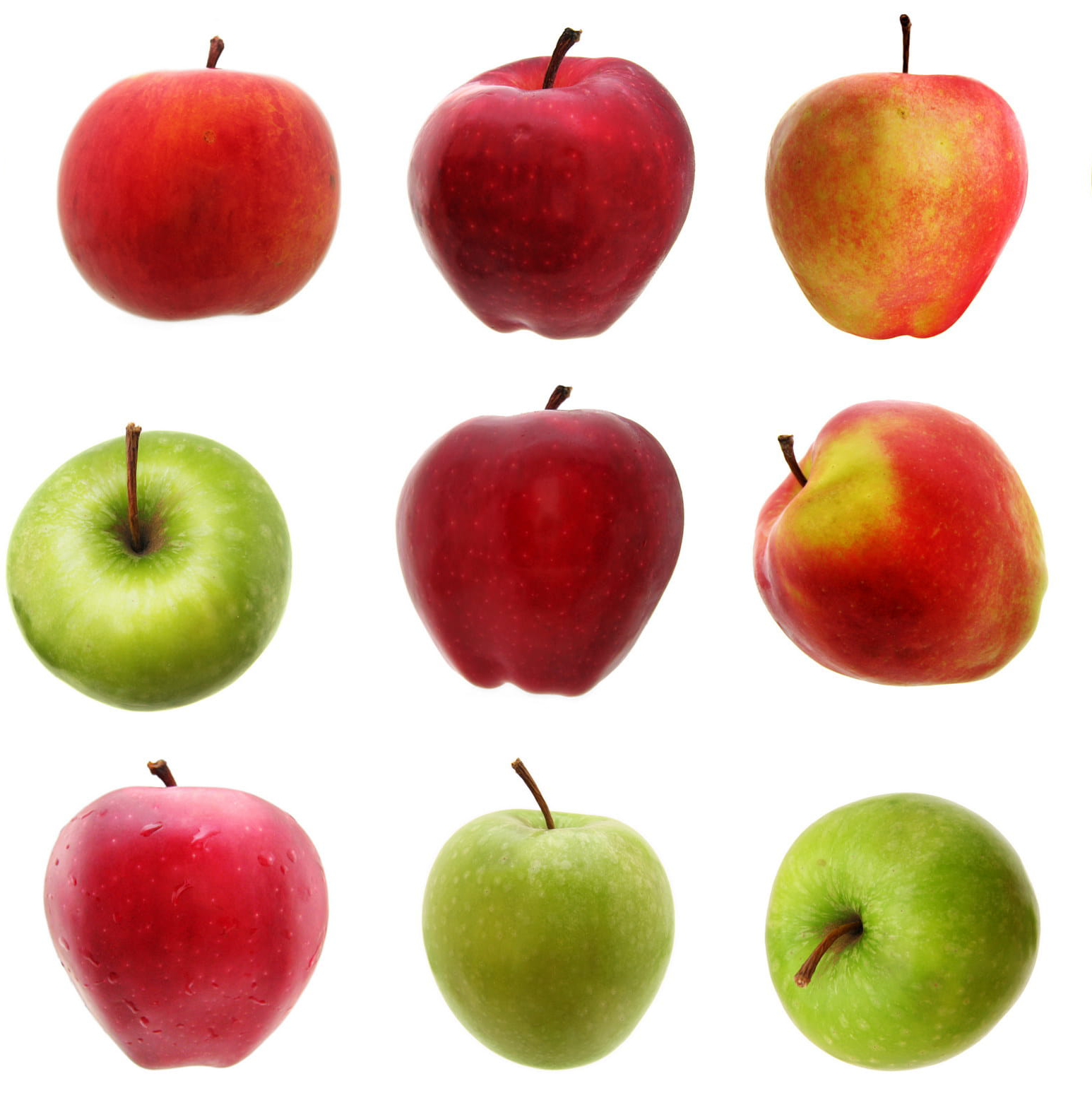 nine apples of various shapes and colors on a white background