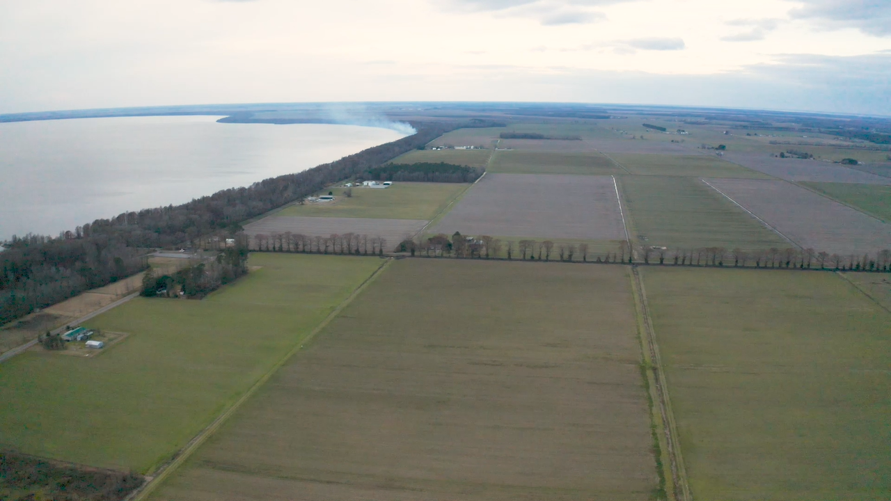 Aerial view of fields and Lake Phelps