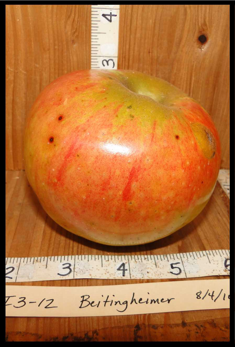 tannish apple with pink blush and darker red spots