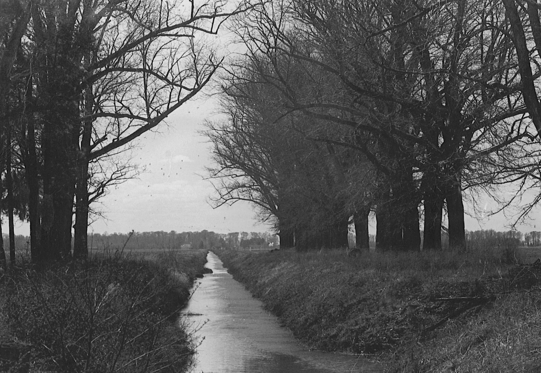 Black and White Photo of canal lined with trees