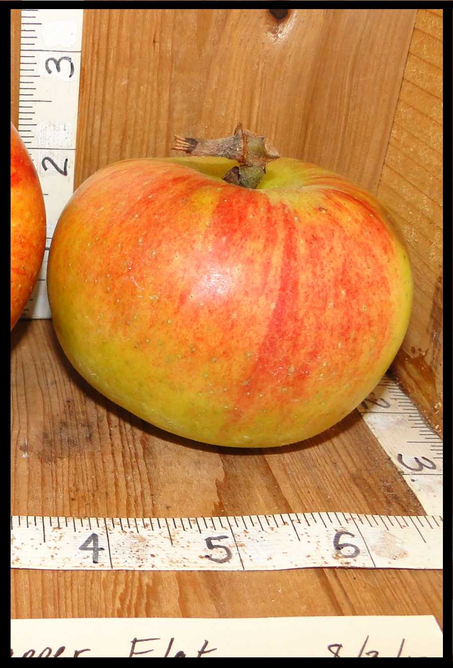 yellowish green apple with red blush and striping