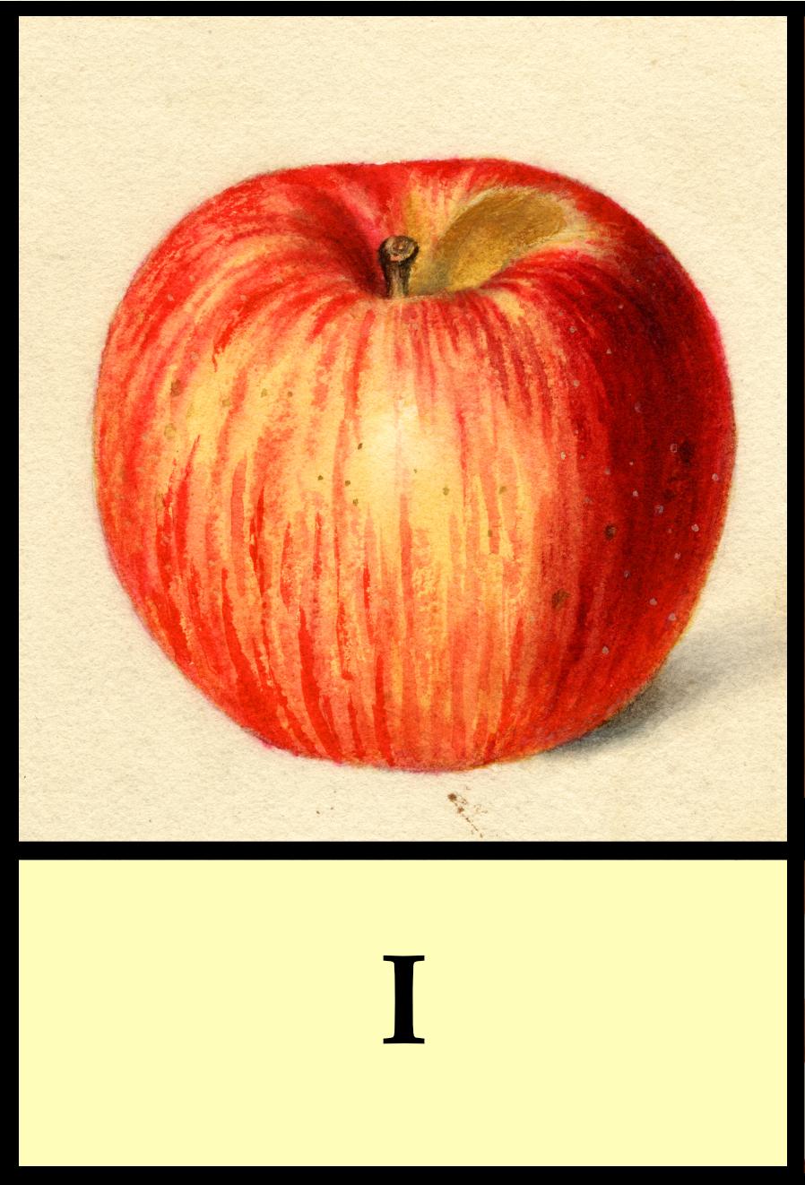 I apples