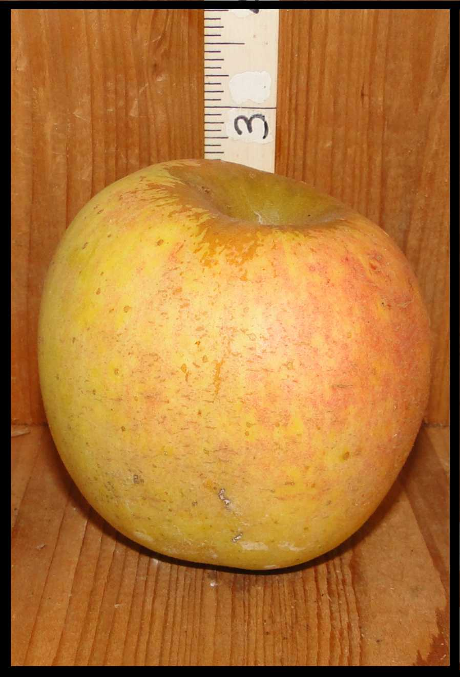 yellow apple with a pale pink blush