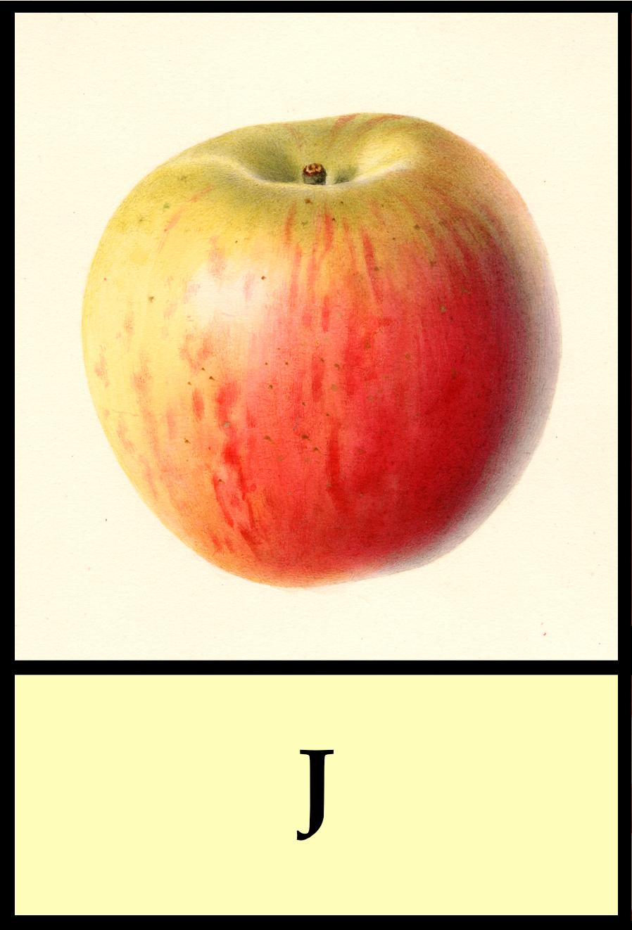 J apples