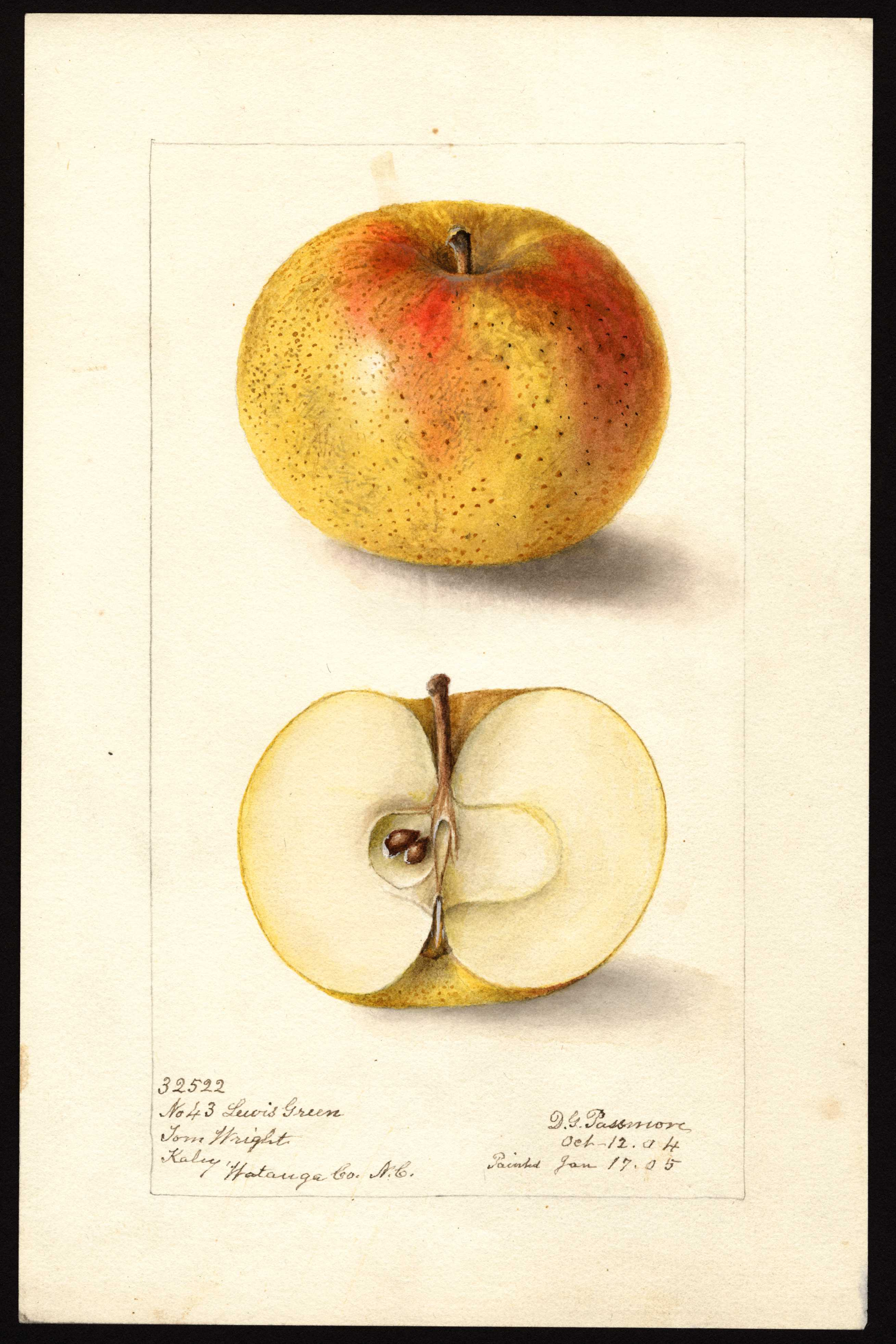 yellow apple with red blush and small brown spots