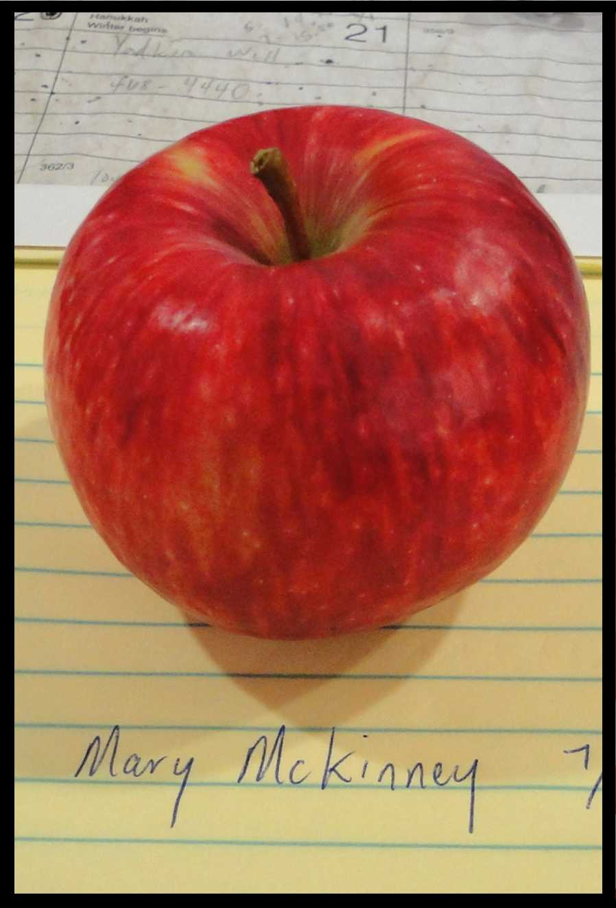red apple with splashes of darker red