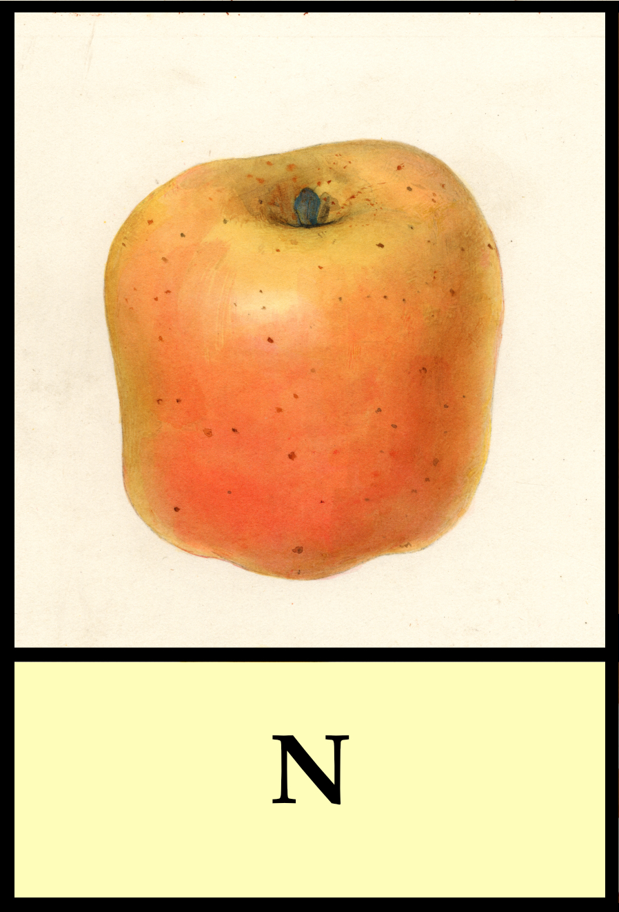 N apples