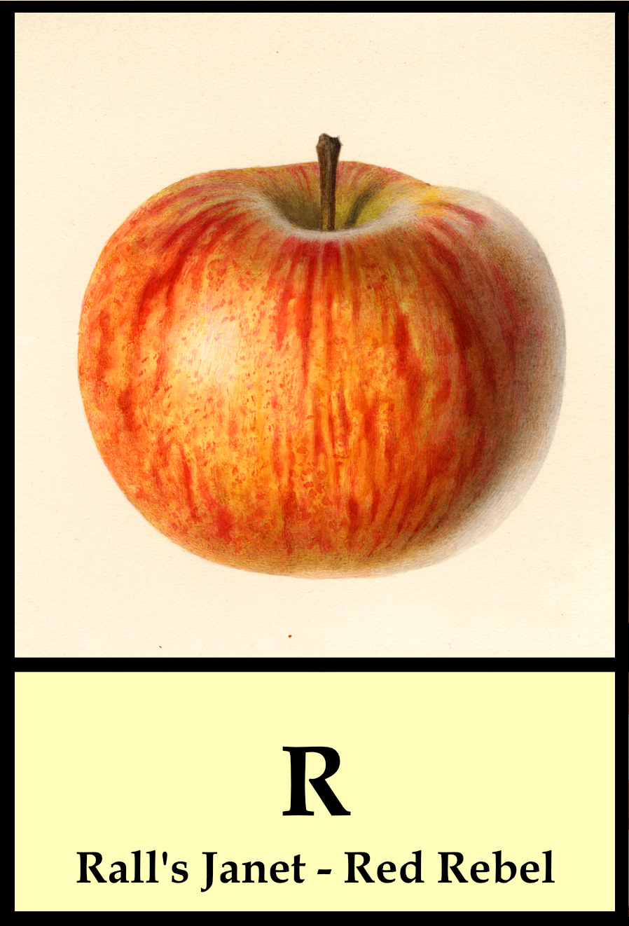 R apples - Rall's Janet to Red Rebel