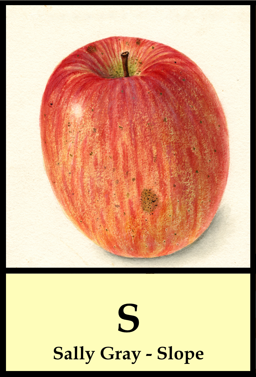 S apples - Sally Gray to Slope