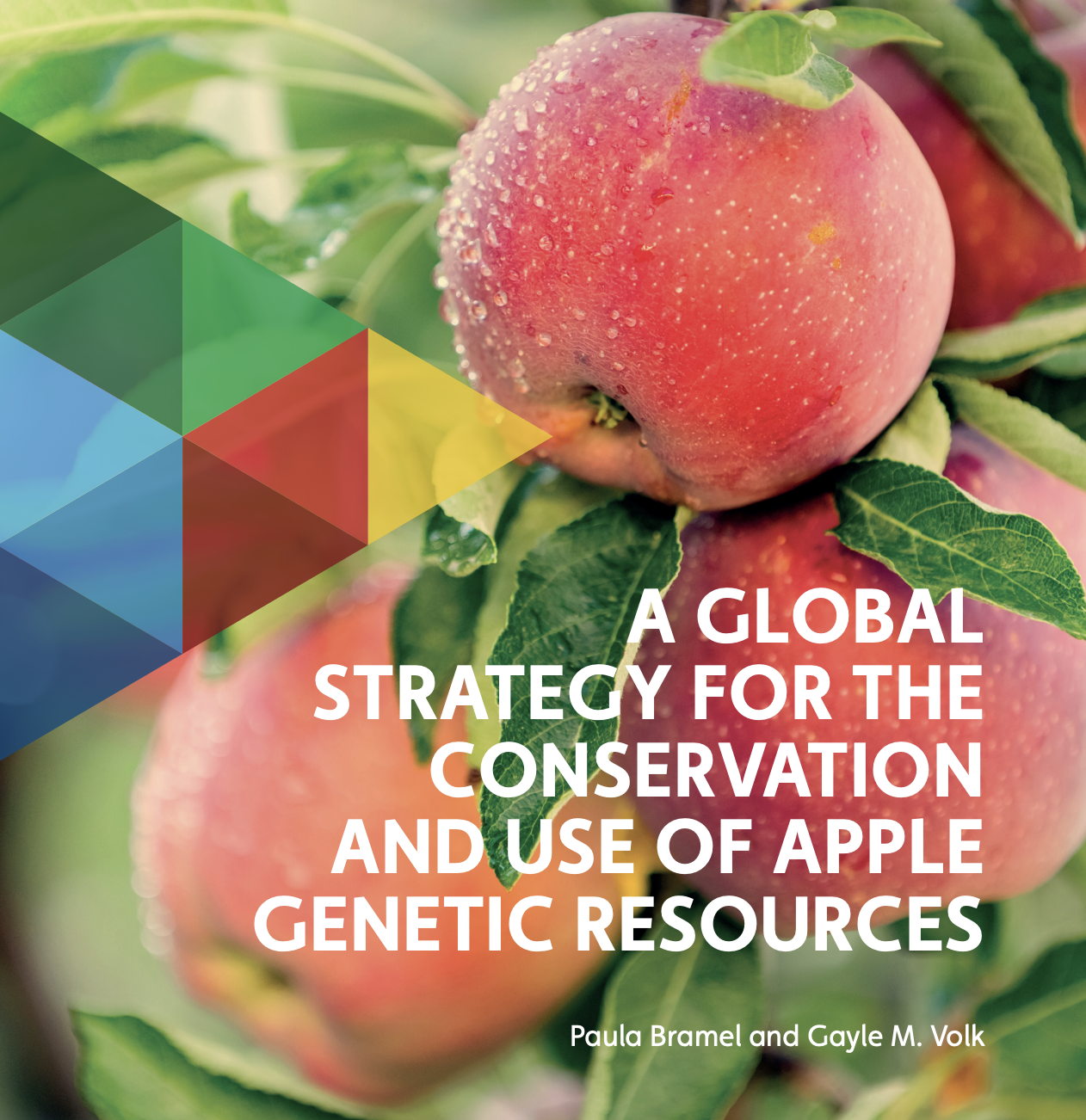 Title page for the Global Strategy for the Conservation and Use of Apple Genetic Resources report