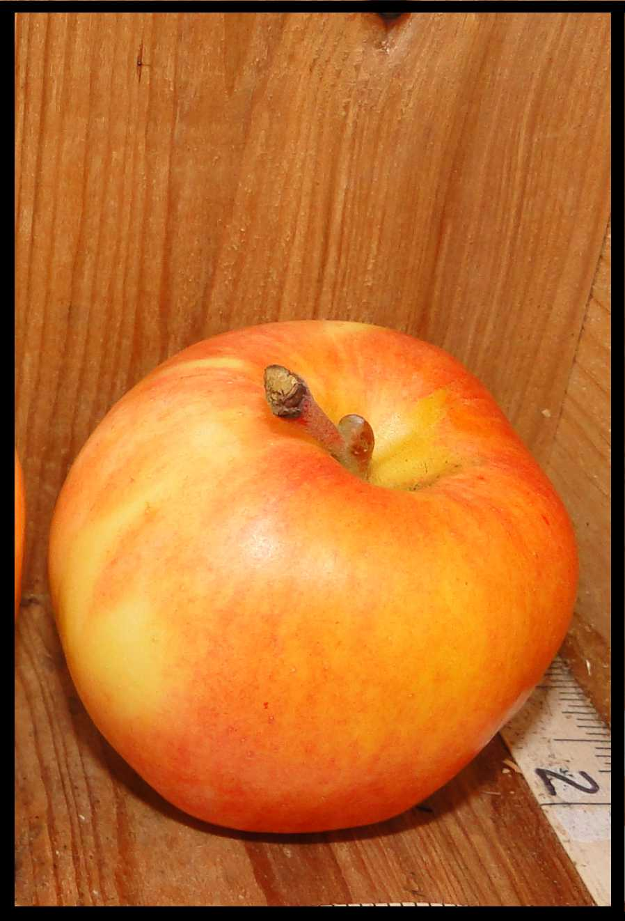 yellow apple with widespread light red blush