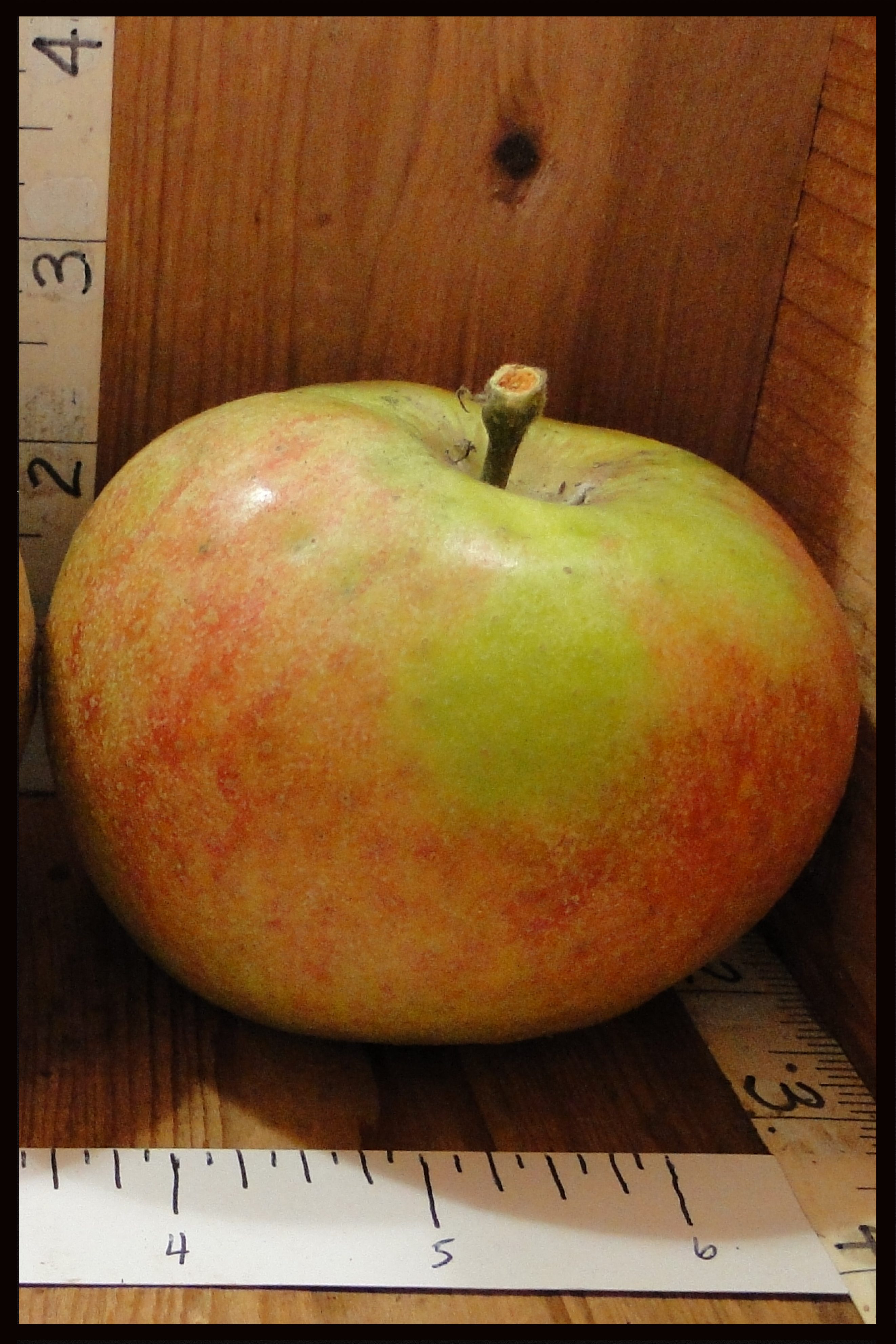 green apple with widespread pink blush