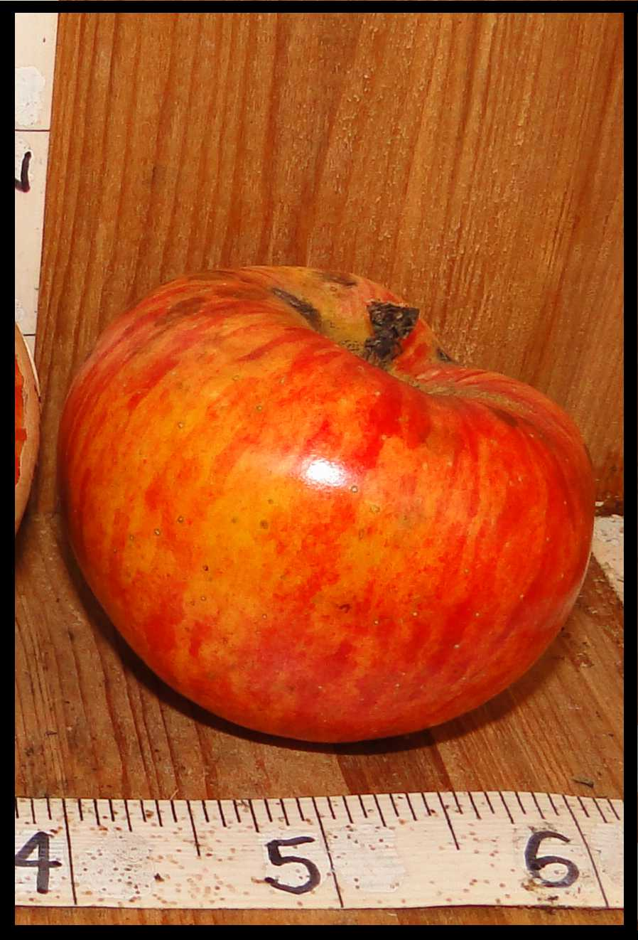 shiny red and orange striped apple