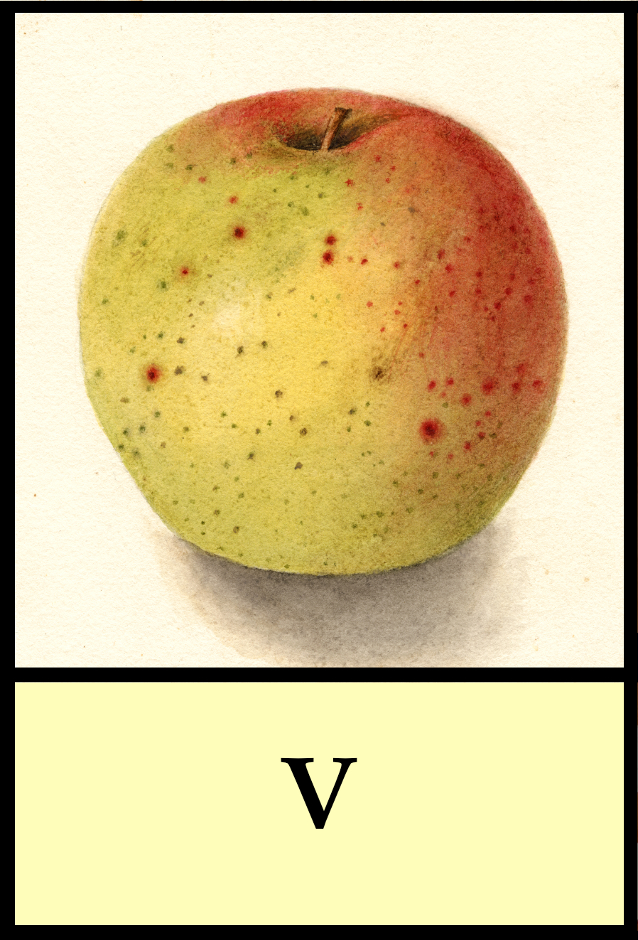 V apples