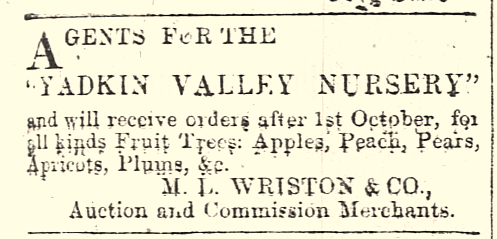 antique advertisement for apple varieties available at a local nursery