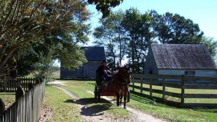 horsedrawn wagon on road at Aycock Birthplace