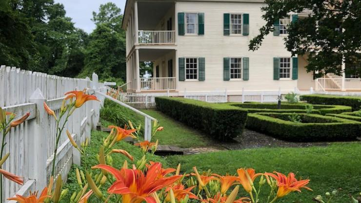 Dayliles in bloom at Somerset Place