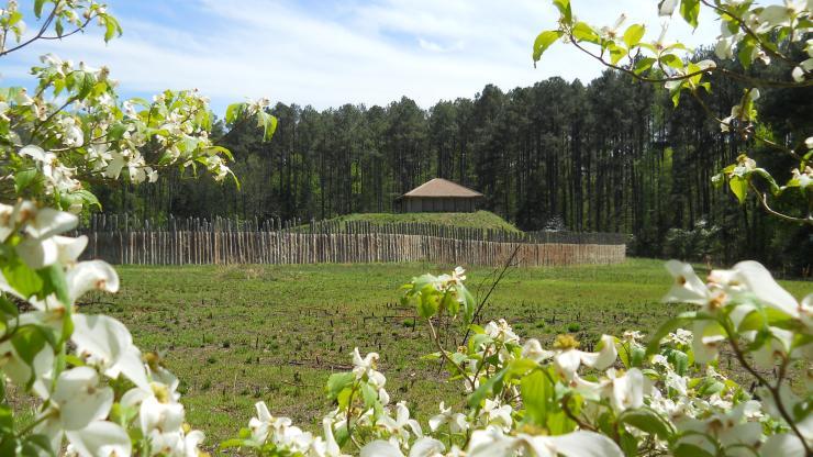 Town Creek Indian Mound in spring