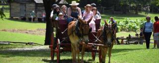 horse drawn wagon at Duke Homestead